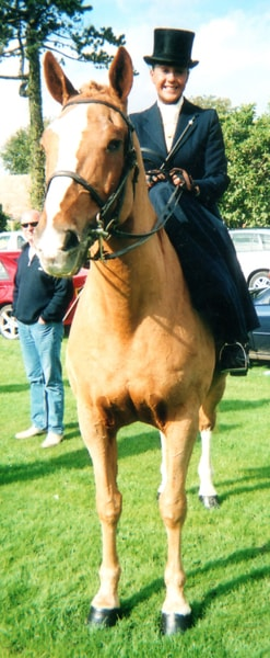 Horse Riding at Wrea Green