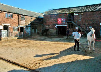 Wrea Green Equitation Centre